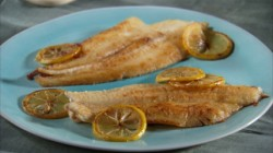 mh_1074_pan_sauteed_sole-428x240